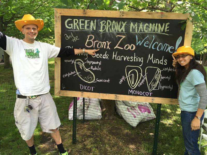 Bronx Zoo Farm
